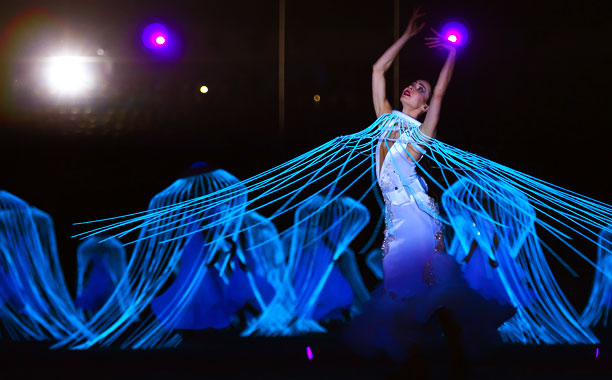 Winter Olympics 2014 | The ''Dove of Peace'' performed to Swan Lake , which is apparently teeming with jellyfish.