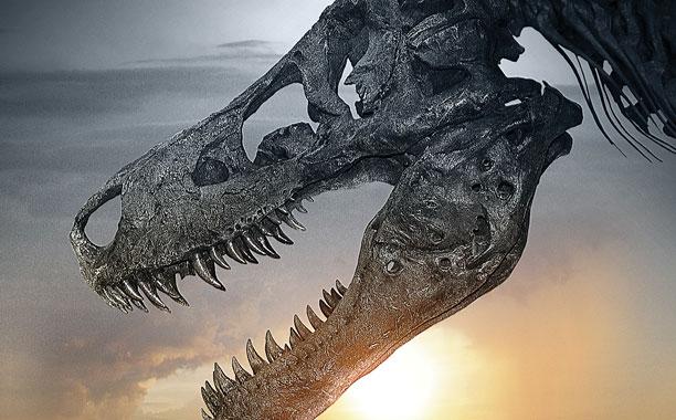 Dinosaur 13 Poster