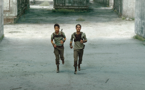 Fmp The Maze Runner