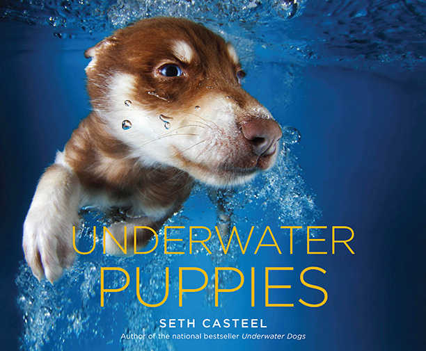 Underwater Puppies features over 80 photographs of pups getting wet and silly. Dog lovers everywhere can pick up a copy on Sept. 16.