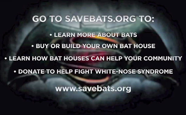 Batman V Superman Bat PSA