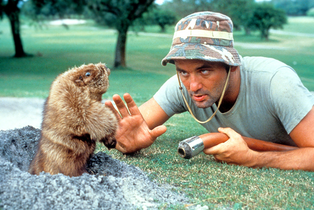 Bill Murray   In the beloved country-club comedy, Murray ad-libbed the role of the speech-impaired groundsman, who equates killing a gopher with winning the war in Vietnam. It's…