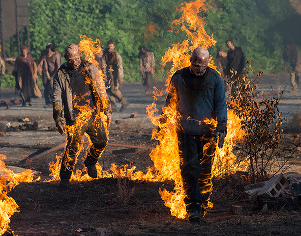 The Walking Dead | The Walking Dead unleashed the biggest action sequence in the history of the show on its season 5 premiere Sunday night as Carol blew up…