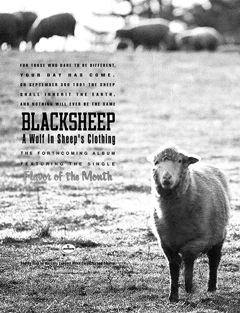 Print ad for Black Sheep's A Wolf in Sheep's Clothing with a photo from the same shoot that produced the iconic cover.