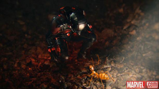 Ant-Man (Paul Rudd) peers at his new peer