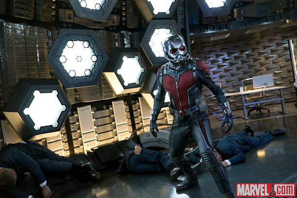Ant-Man (Paul Rudd) stands tall
