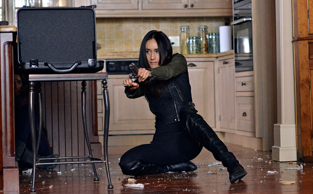 Nikita is literally a killing machine. After a troubled childhood, she was brought in by Division, a secret agency that trained her to become one…