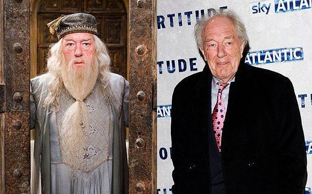 Michael Gambon (Professor Albus Dumbledore)
