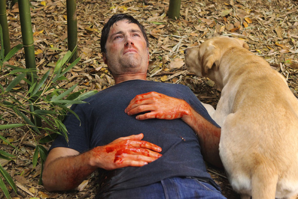 Matthew Fox, Lost | Aired: May 23, 2010 (series finale) Ultimately polarizing not for its mysteries but for its answers, the Lost series finale had a grand sweep, giving…