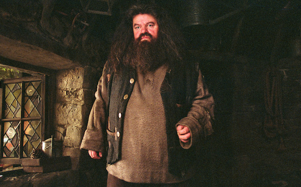 Hagrid Doesn't Have a Patronus