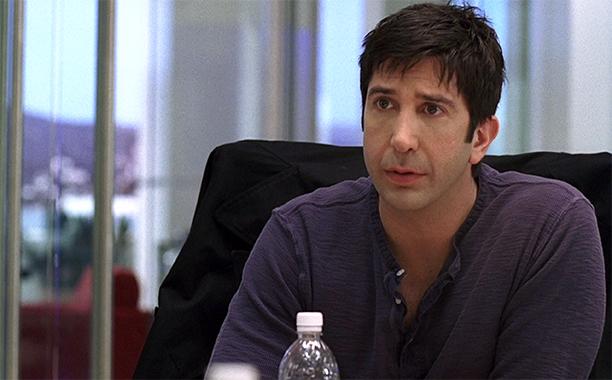 David Schwimmer as David Schwimmer in Season 6 (2009)