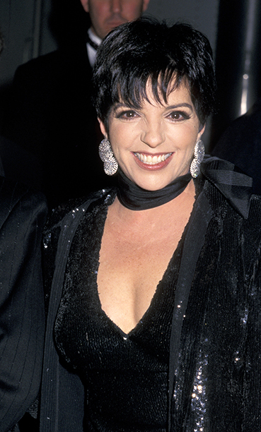 Performer and Presenter Liza Minnelli