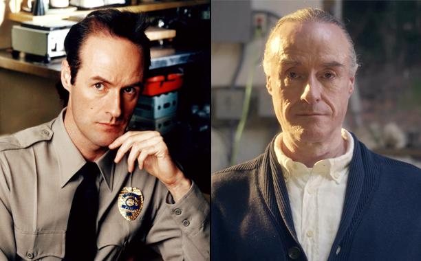 Harry Goaz (Deputy Andy Brennan)
