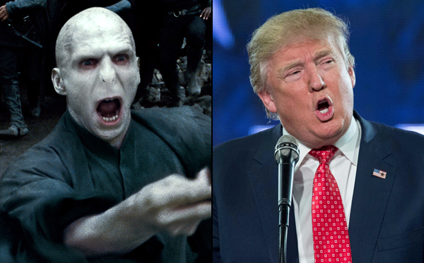 Lord Voldemort, Harry Potter