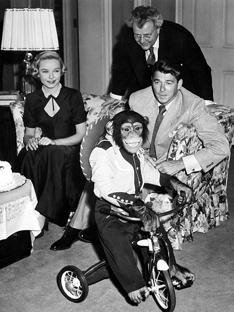 Ronald Reagan | Key Role: Bonzo in Bedtime for Bonzo (1951). Oscar-worthy Moment: Playing a chimp raised as a human child by anthropologist Ronald Reagan, Peggy gives a…
