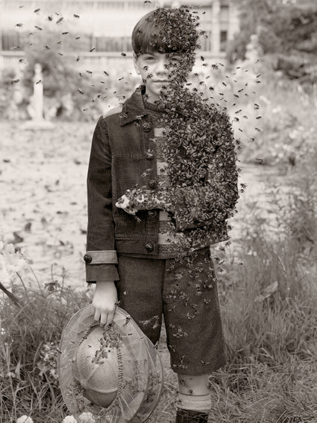 A Bonnet of Bees