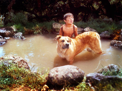 Old Yeller | When the stray mutt they name Yeller shows up on a dirt-poor family farm, he quickly becomes a loyal companion and gallant protector. While bonding…