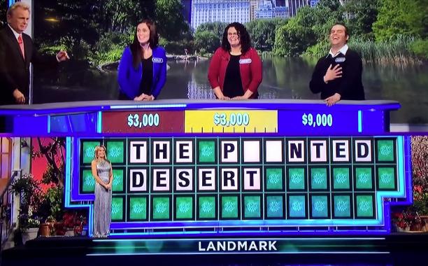 'The Pointed Desert'