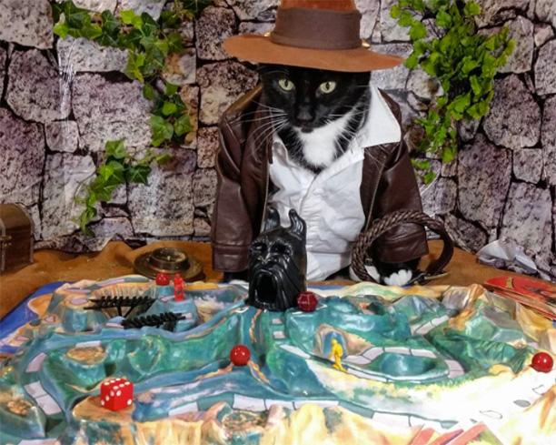 Indiana Jones, Indiana Jones