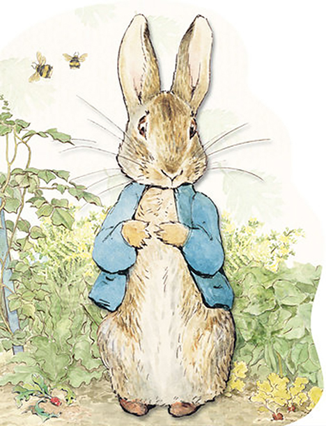 The Large Shaped Board Book Edition of The Tale of Peter Rabbit