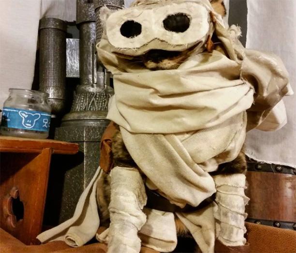 Rey, Star Wars
