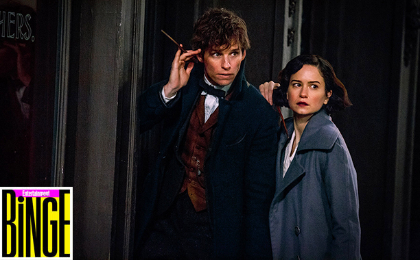 """ALL CROPS: (L-r) EDDIE REDMAYNE as Newt Scamander and KATHERINE WATERSTON as Tina in Warner Bros. Pictures' fantasy adventure """"FANTASTIC BEASTS AND WHERE TO FIND THEM, """" a Warner Bros. Pictures release. Photo by Jaap Buitendijk"""