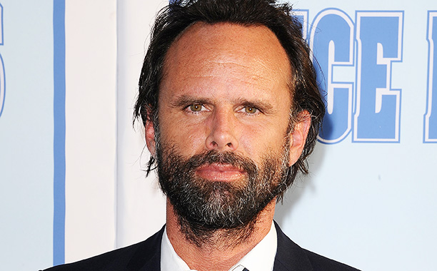 All Crops: 545476402 Collection: FilmMagic LOS ANGELES, CA - JULY 07: Actor Walton Goggins attends the premiere of 'Vice Principals' at Avalon Hollywood on July 7, 2016 in Los Angeles, California. (Photo by Jason LaVeris/FilmMagic)
