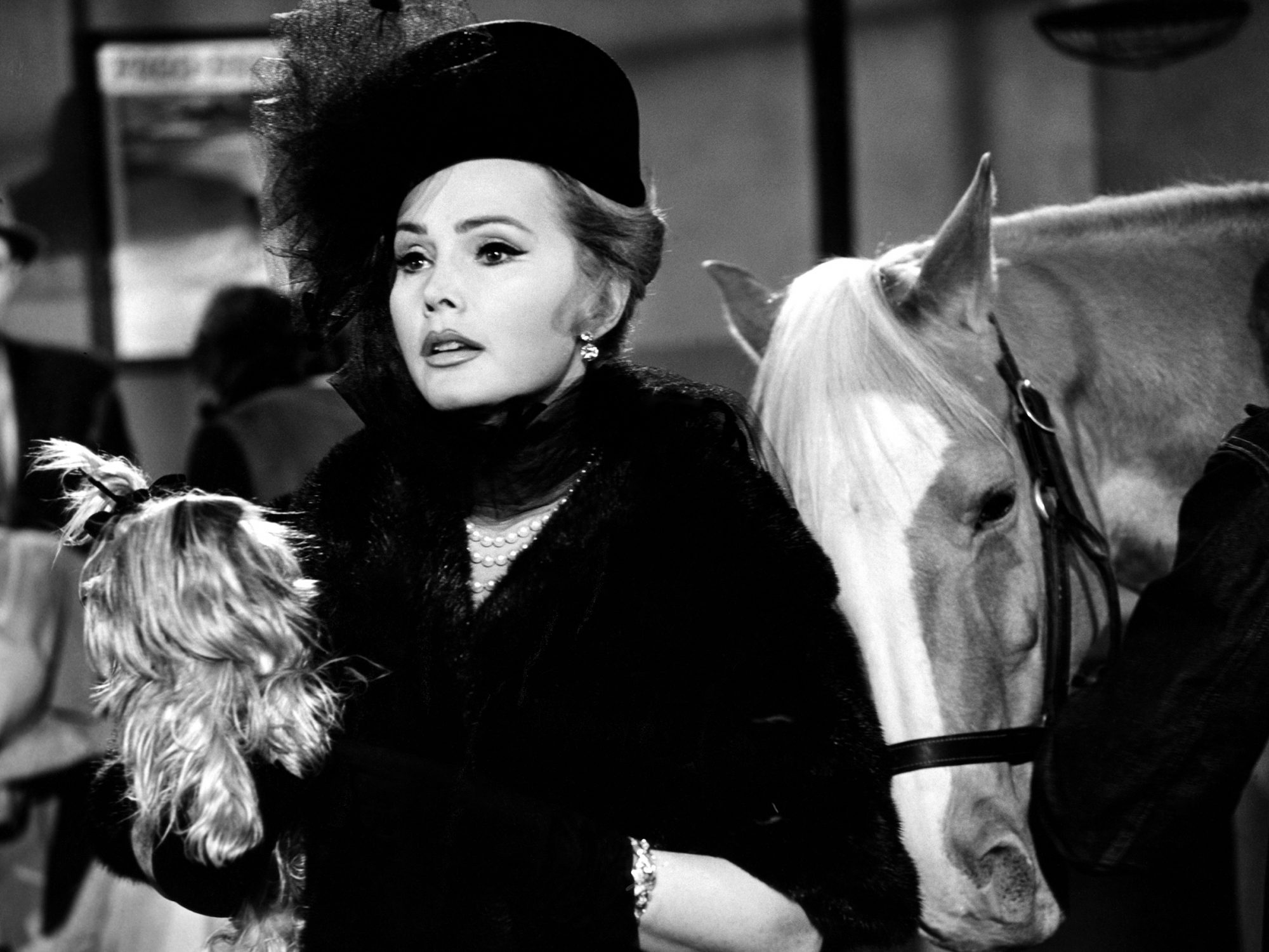 MISTER ED, Zsa Zsa Gabor, 'Zsa Zsa', (Season 2, aired January 28, 1962), 1961-66