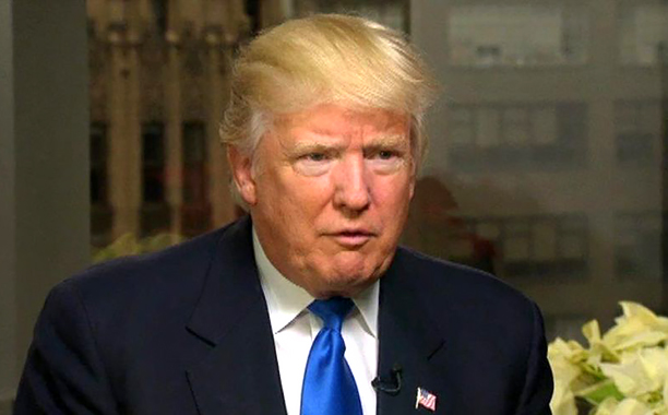 ALL CROPS: Doanld Trump on Fox News (screen grab)