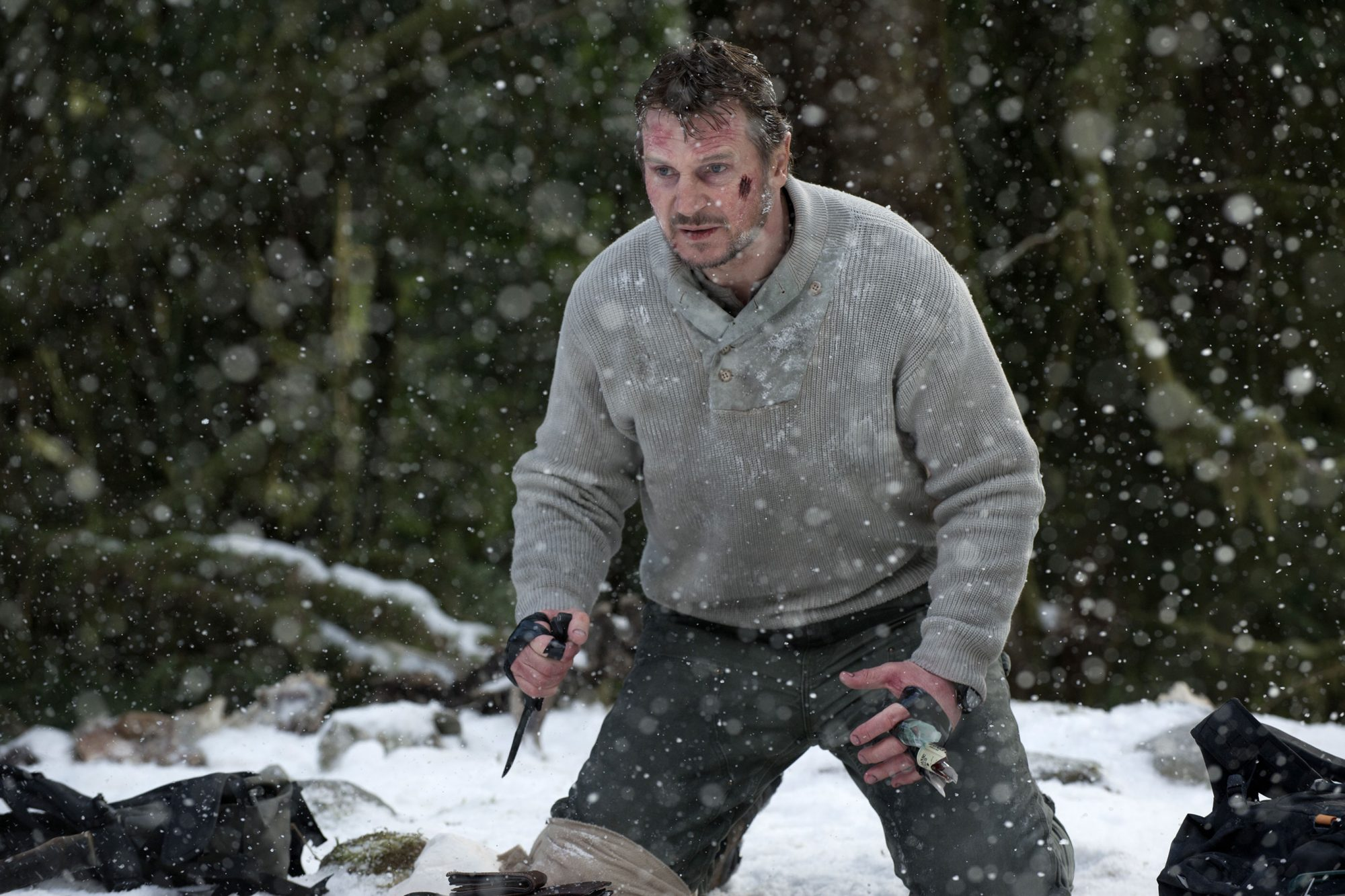 The Grey (2012)Liam Neeson
