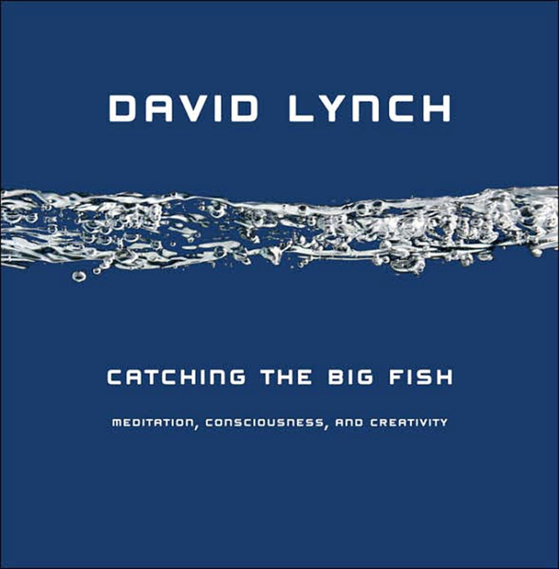 David LynchCatching the Big FishHardcover Book Cover