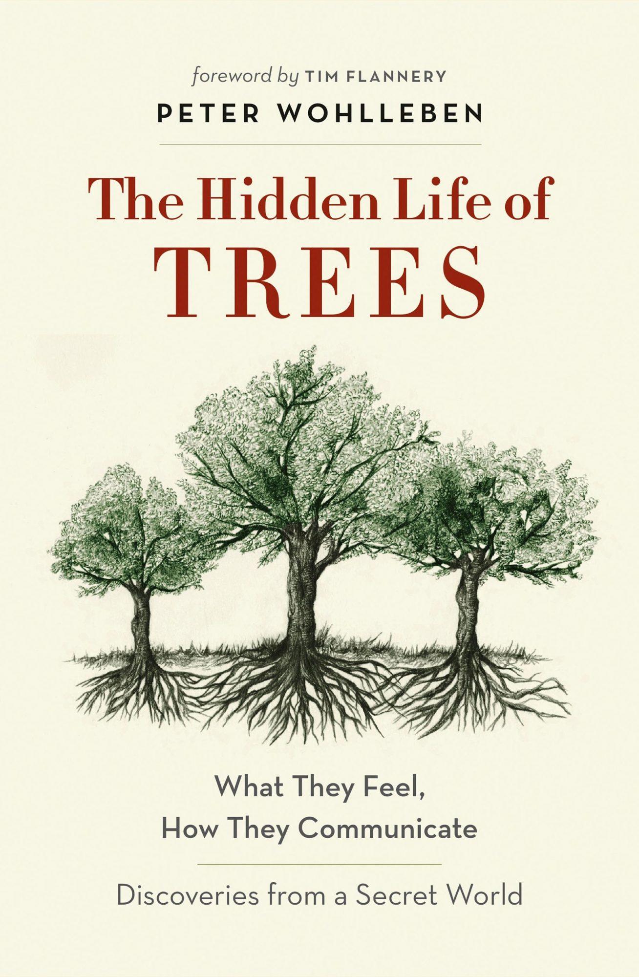 hidden-life-of-trees