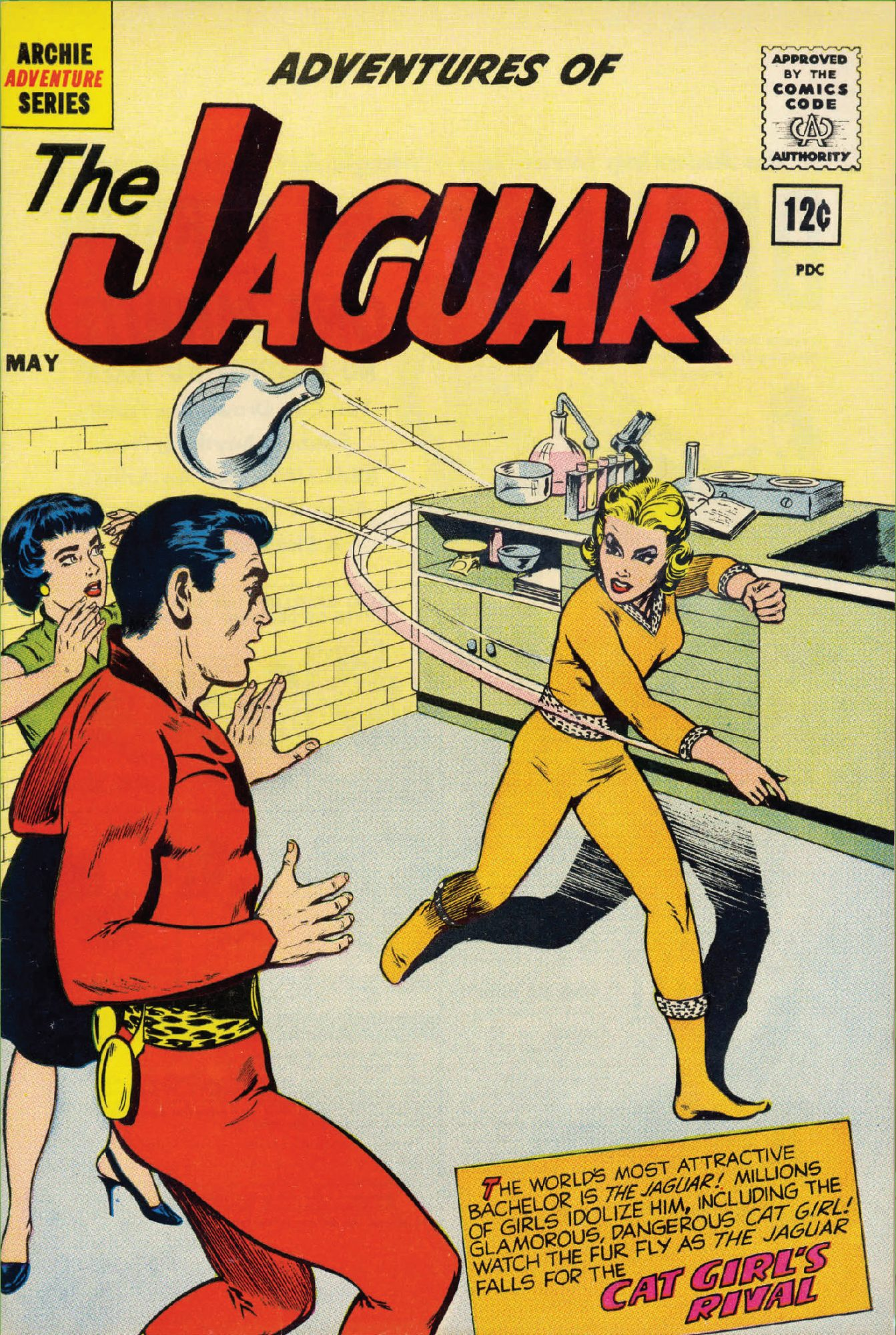 legion-of-regrettable-supervillains_silver-age_cat-girl