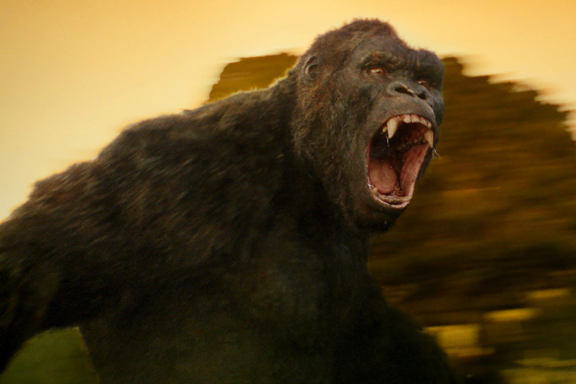 KONG: SKULL ISLAND, King Kong, 2017. ©Warner Bros. Pictures/courtesy Everett Collection