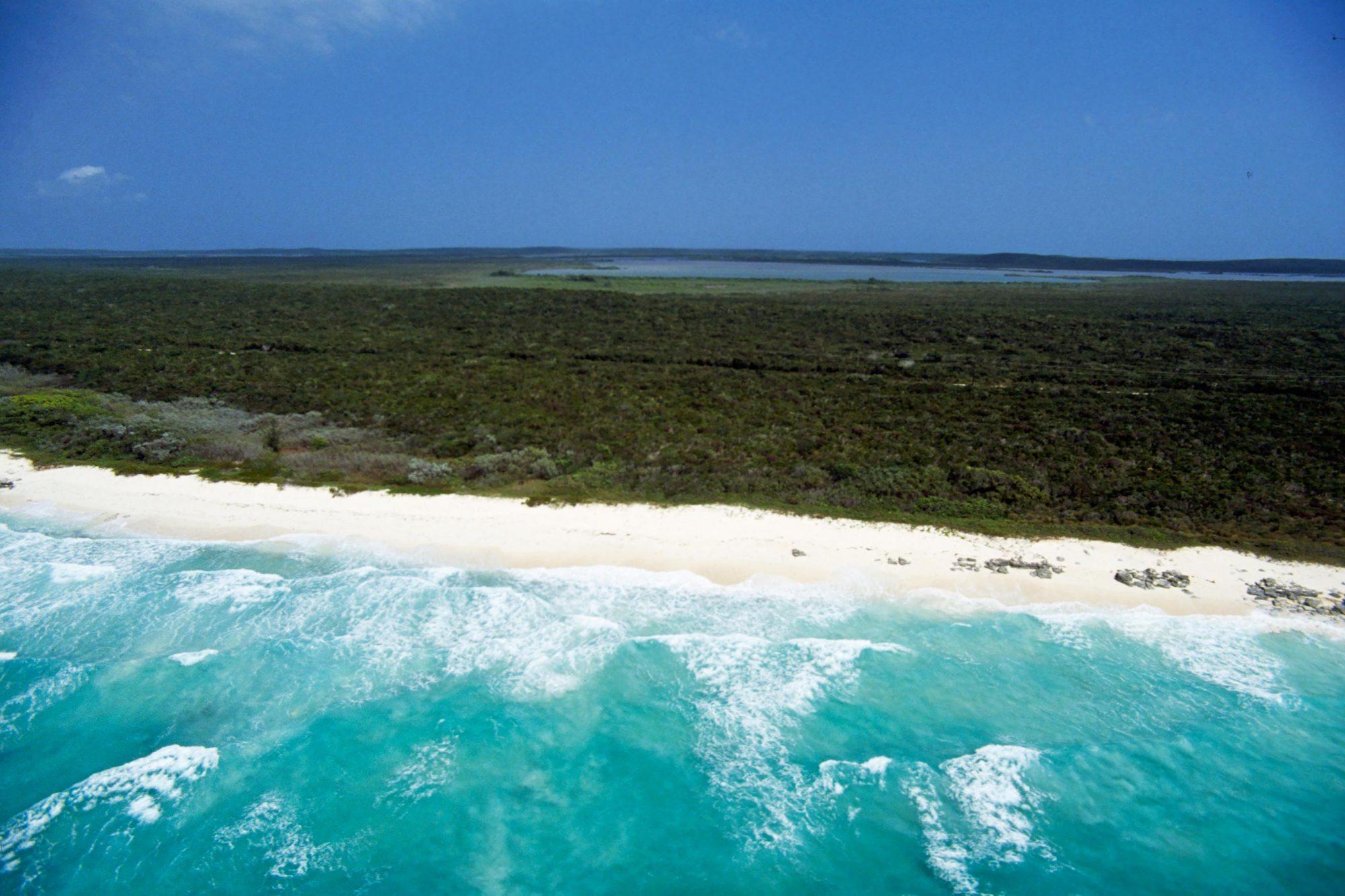 Beach, east coast of San Salvador island