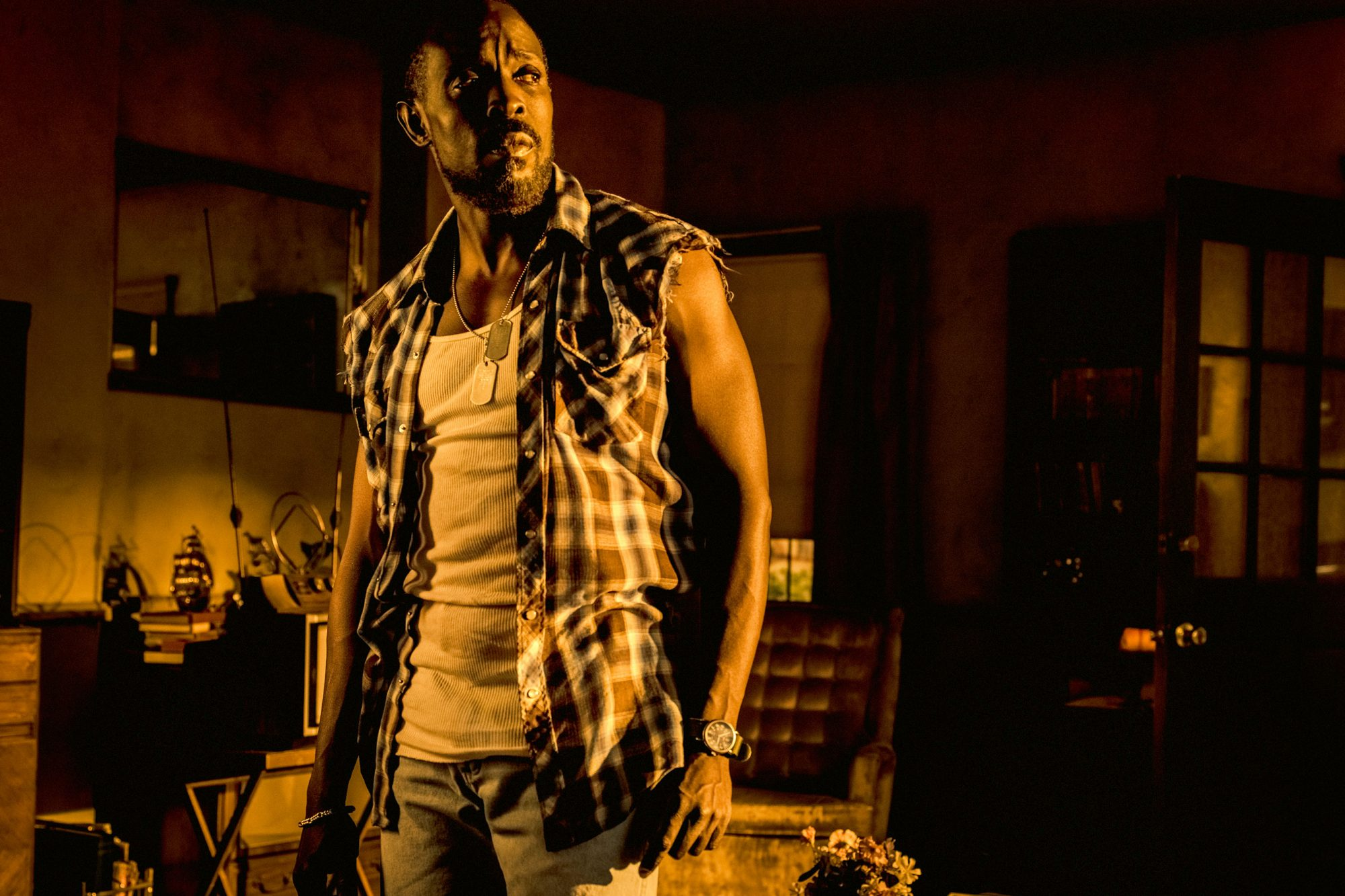 Michael K. Williams in Hap & Leonard