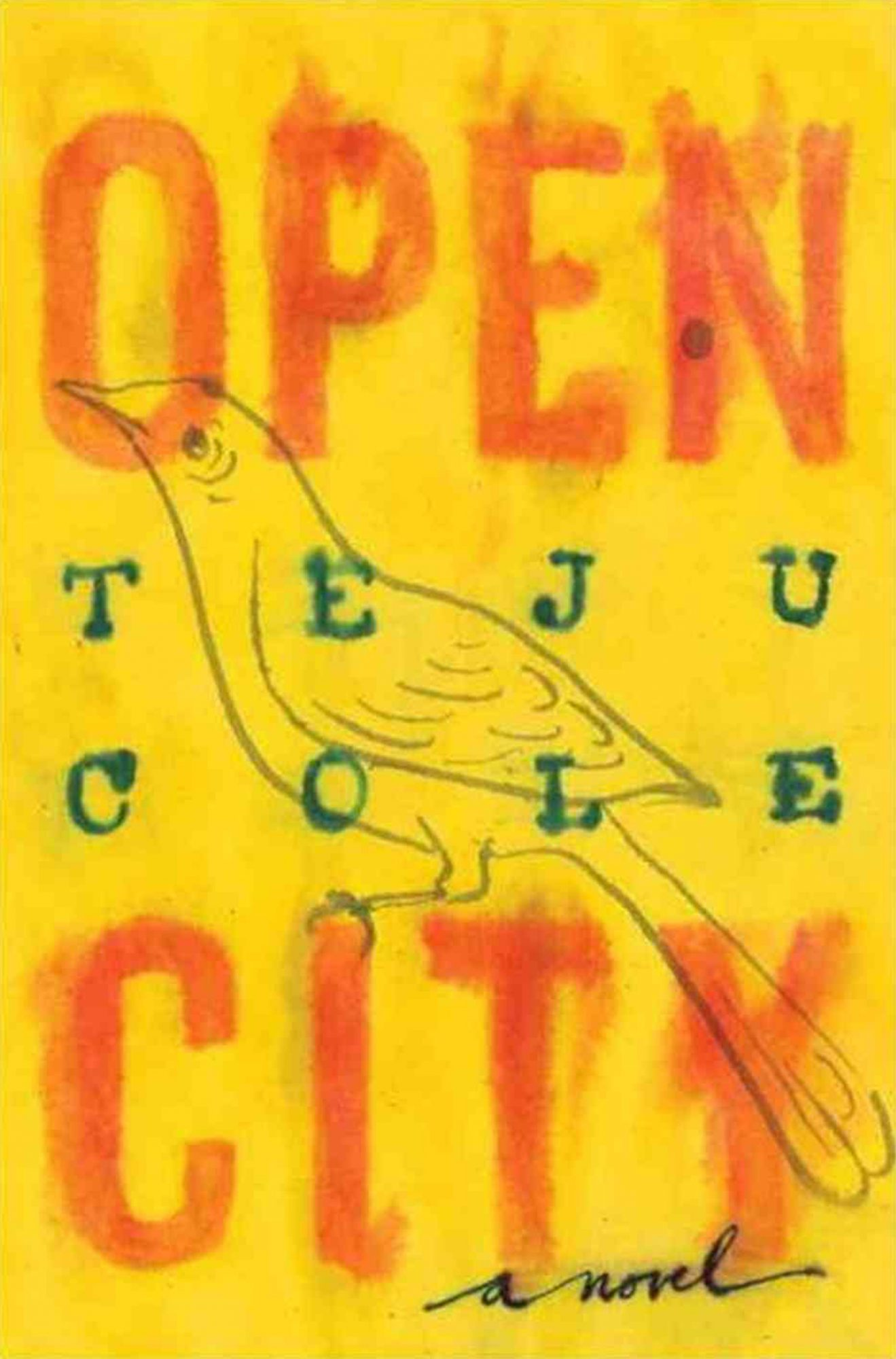 Open City, Teju Cole