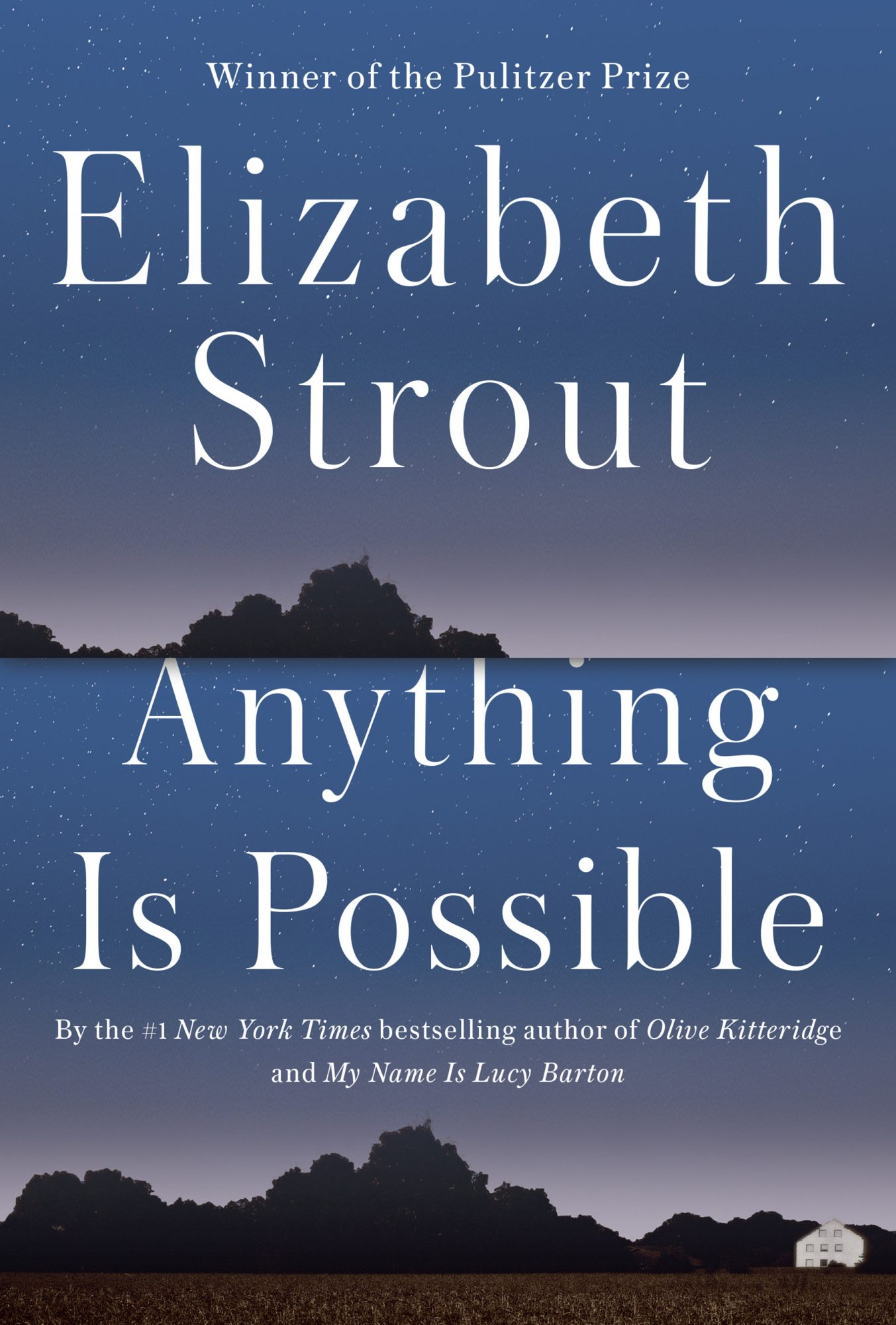 Anything Is PossibleElizabeth Strout2017