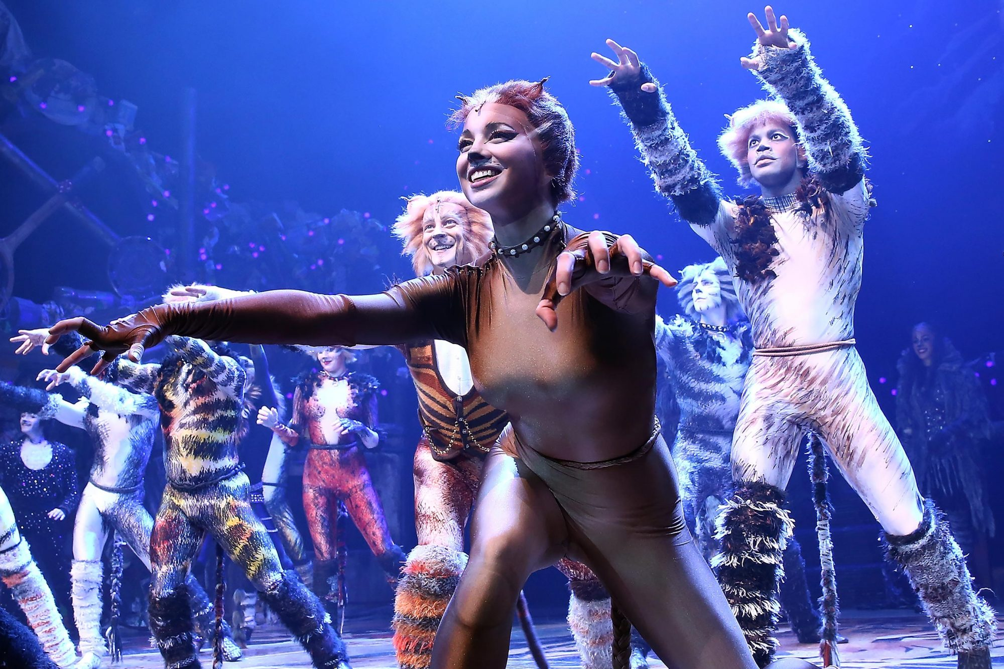 "Grumpy Cat Visits The Broadway Cast of ""Cats"""