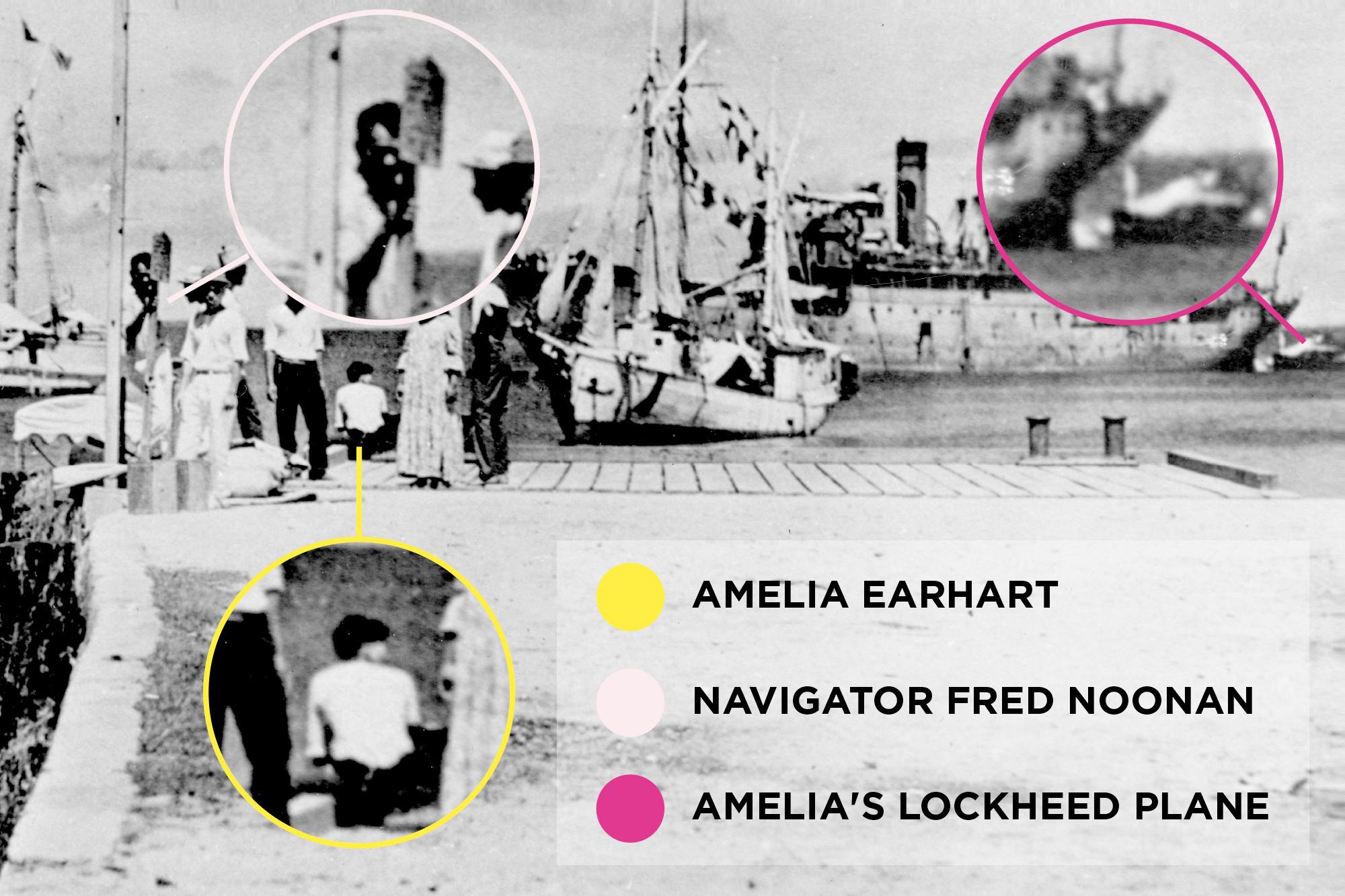 amelia-graphic