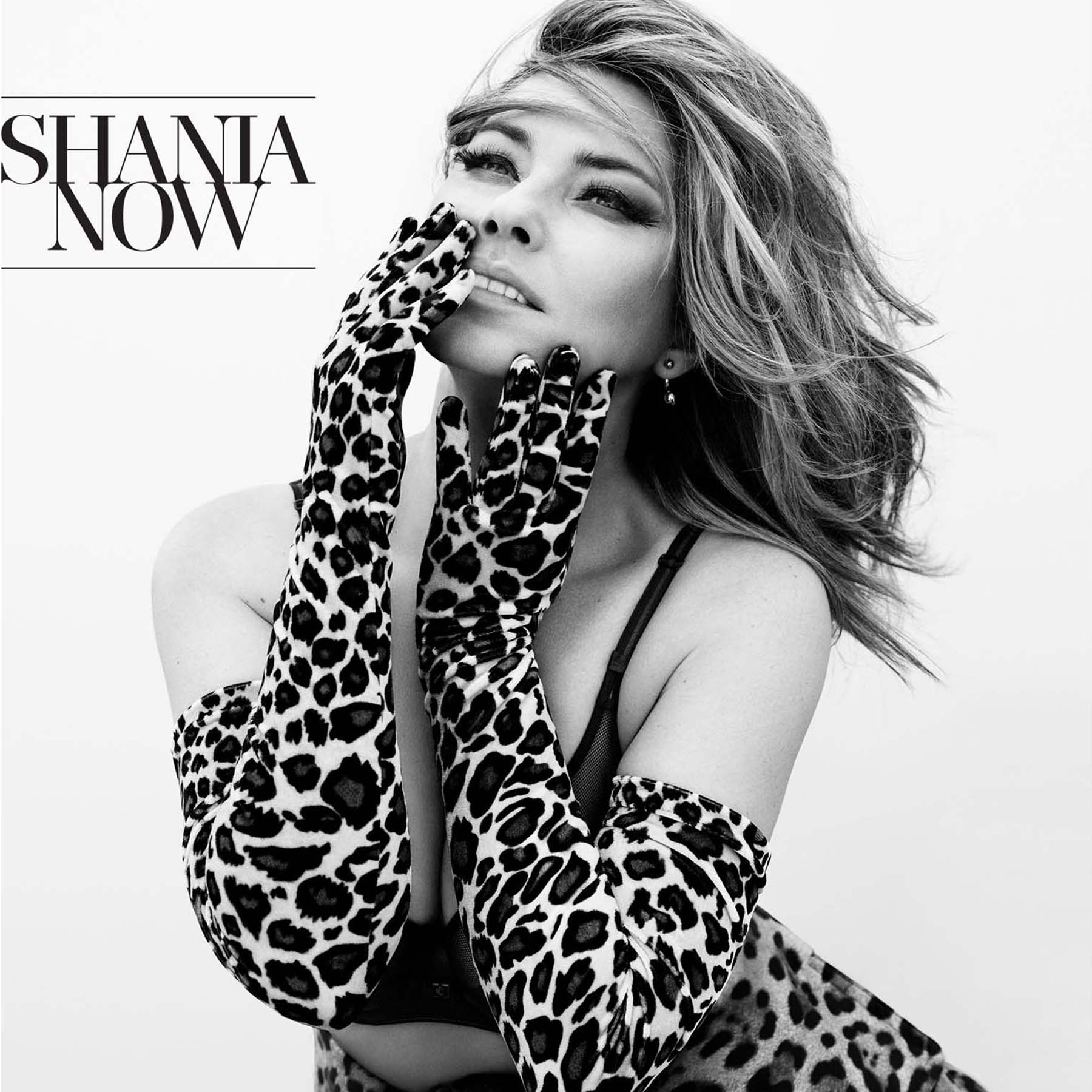 Shania Twain 'NOW' album cover