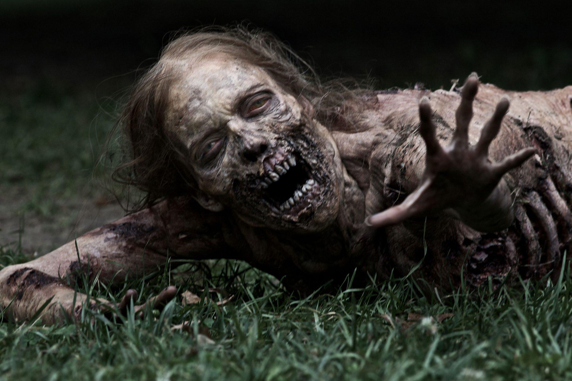 Walker - The Walking Dead, Season 1 - Photo Credit: AMC
