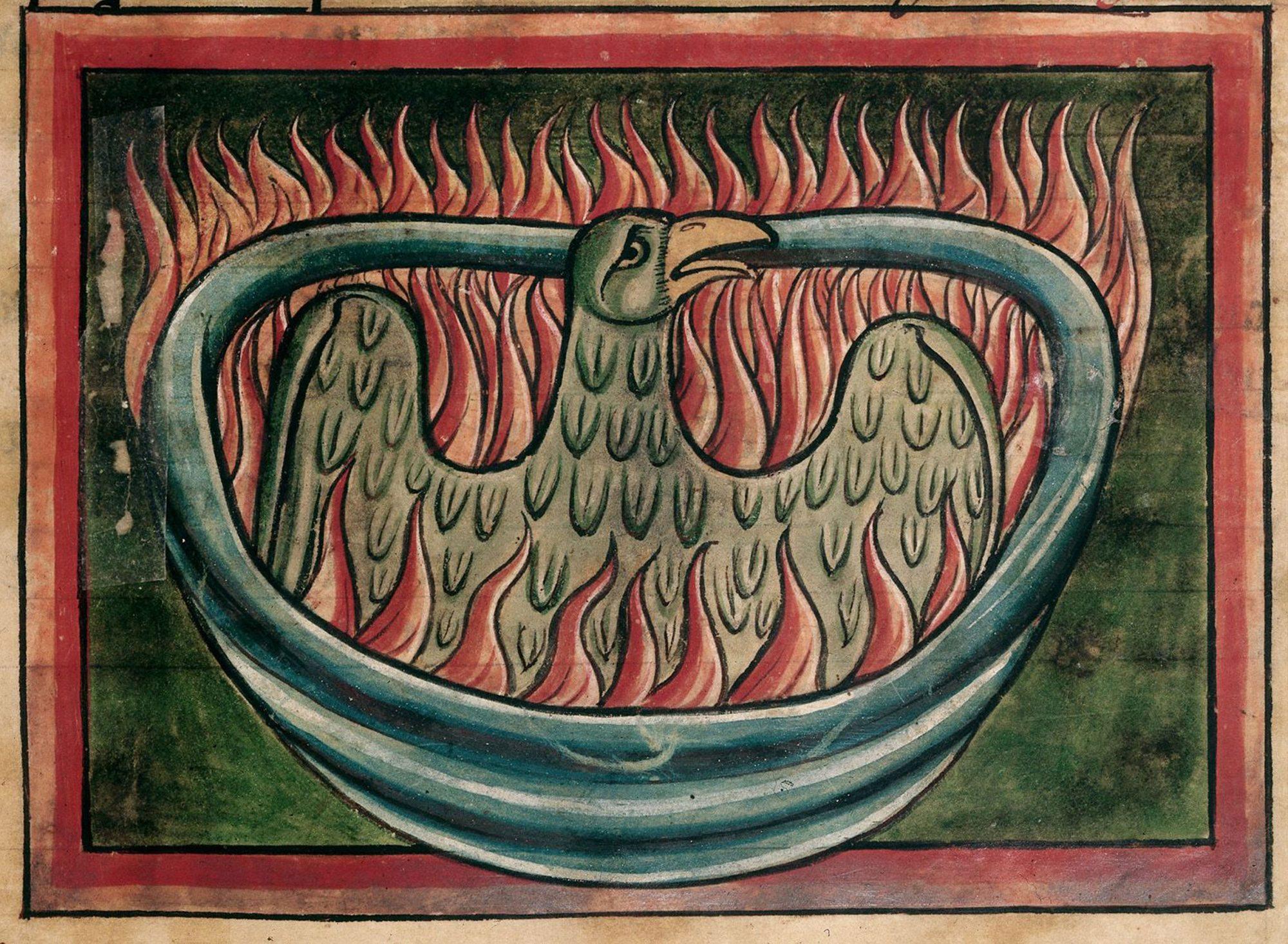 harry-potter-detail-phoenix