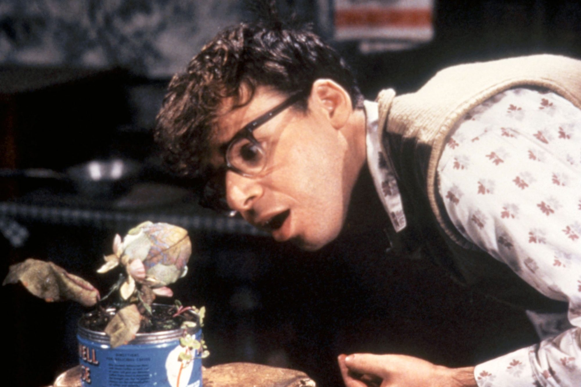 LITTLE SHOP OF HORRORS, Rick Moranis, 1986, (c)Warner Bros./courtesy Everett Collection
