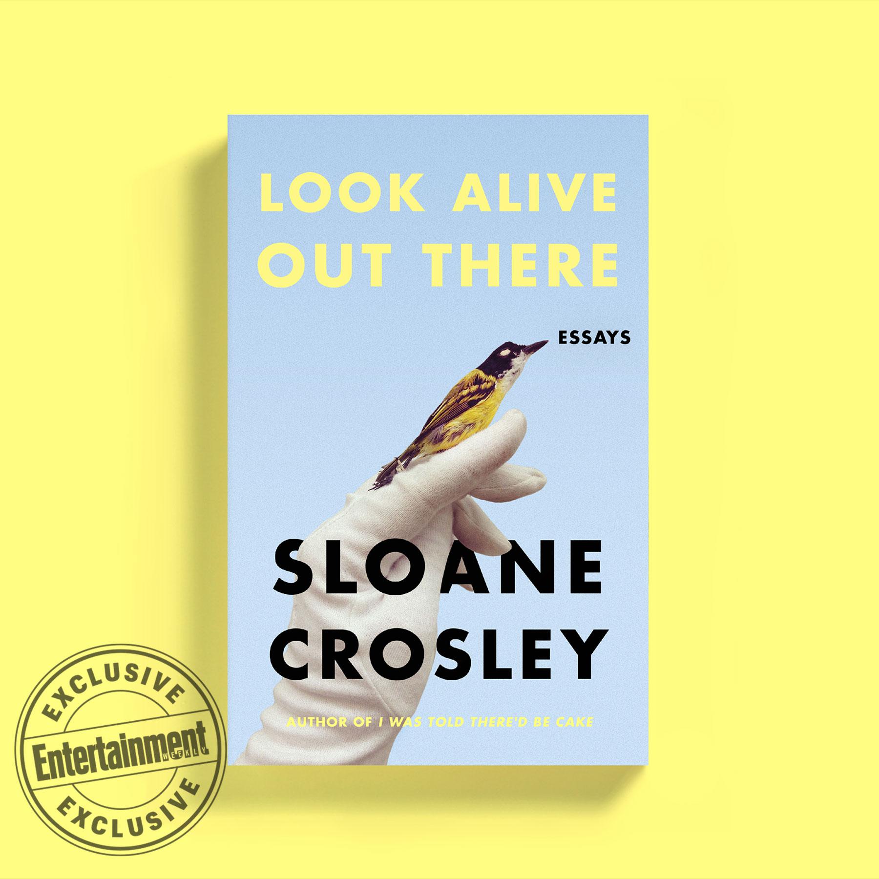 Sloane Crosley book
