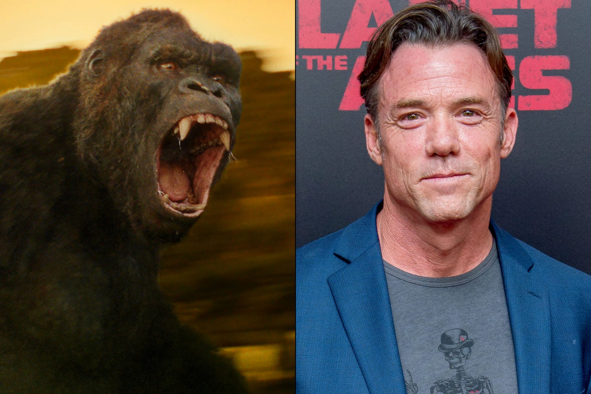 TerryNotary_Kong