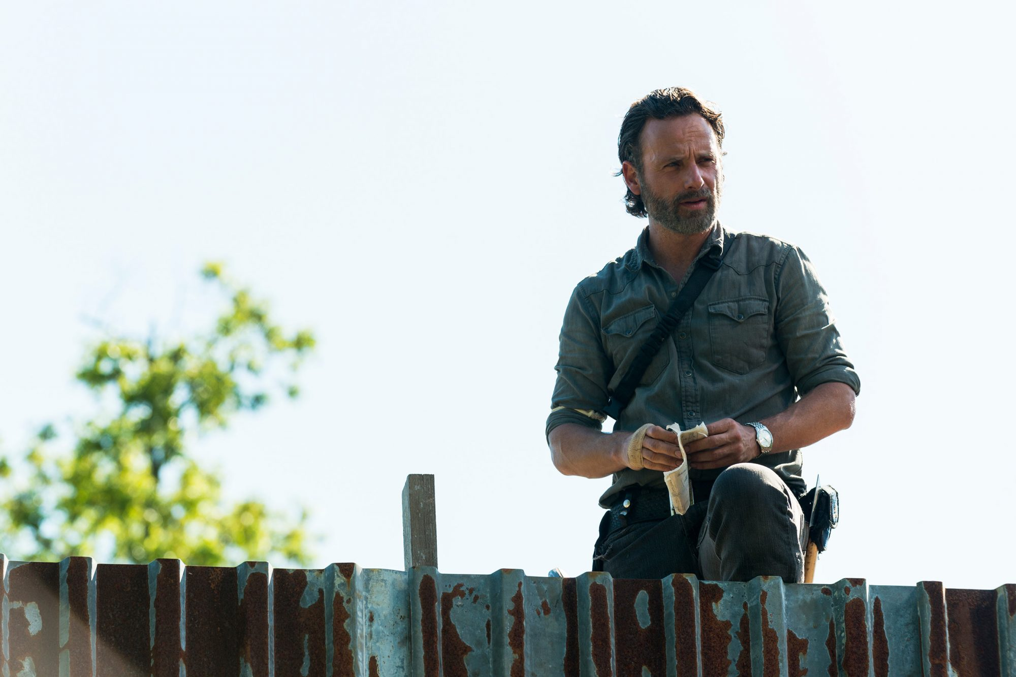 TWD_801_GP_0509_0019-RT