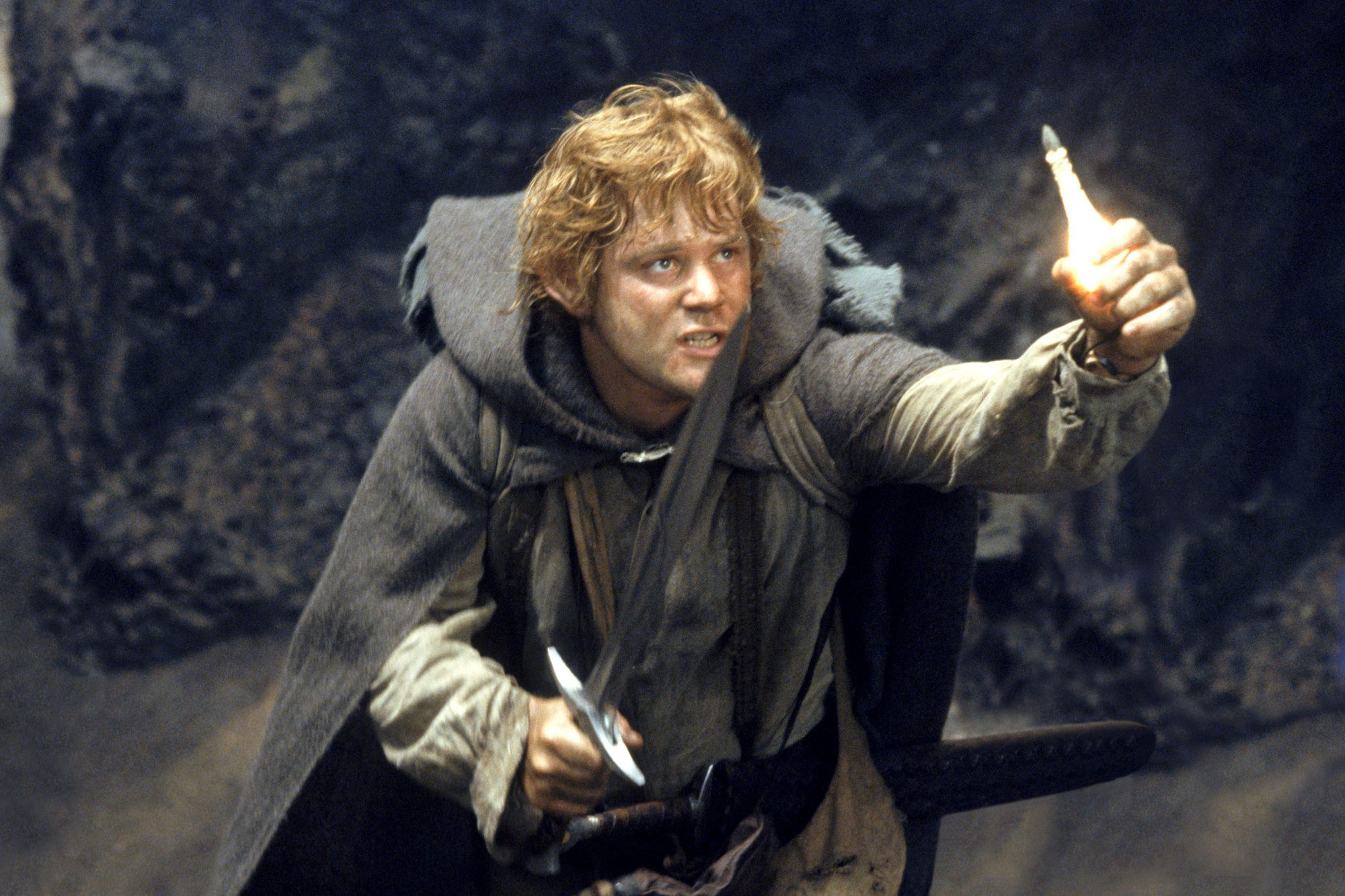 Lord of the Rings: The Return of the King (2003)Sean Astin
