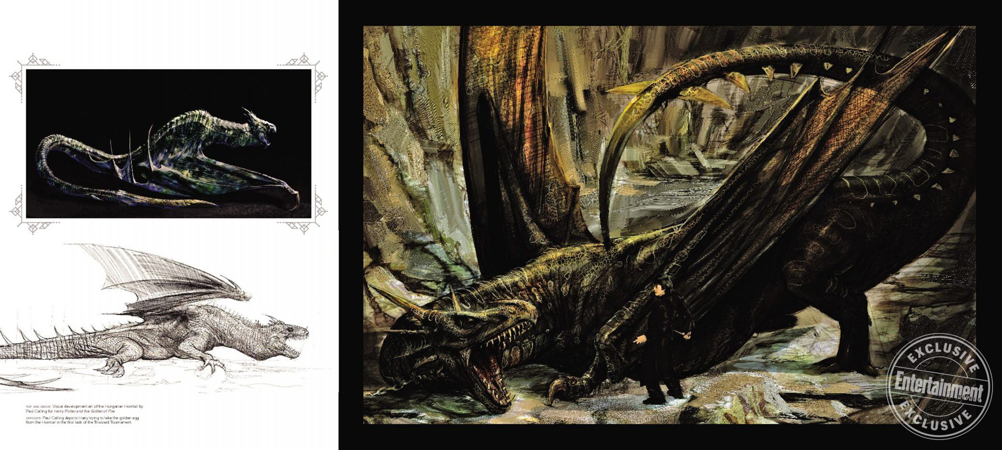 ArtofHP_gatefold-dragons_072517