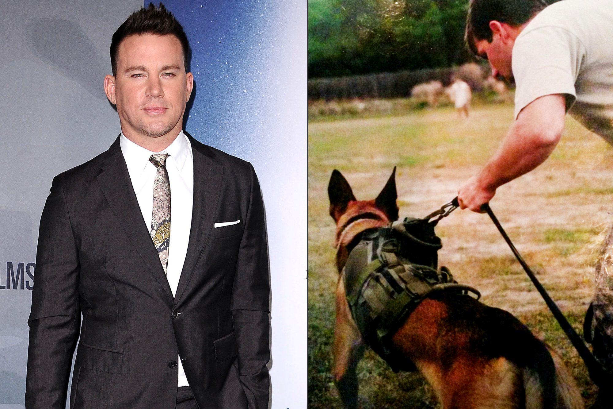 Channing Tatum / War Dog